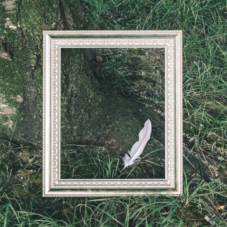 三面川中州公園にてリプティック-指で描くプロジェクト-を開催。羽とフレーム